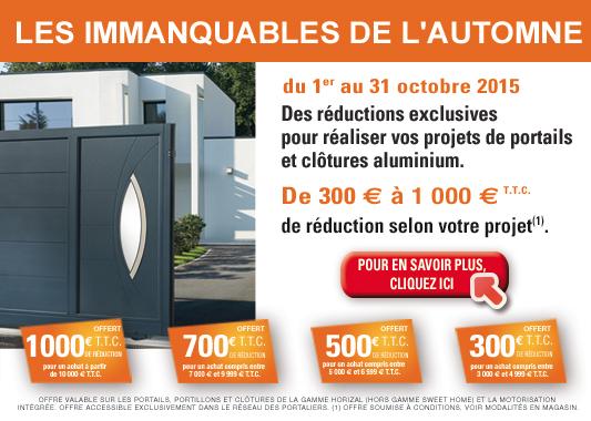 promotion octobre 2015 portail horizal lelandais fermetures lelandais fermetures. Black Bedroom Furniture Sets. Home Design Ideas